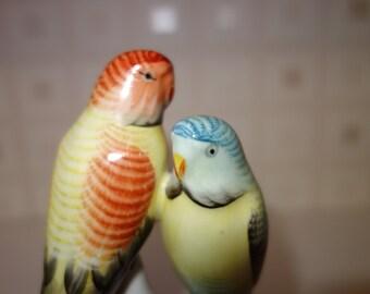 Hollohaza pair of parakeets