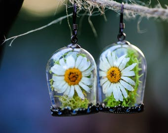 Terrarium jewelry, Real moss, Real Daisy earrings, Flower earrings, Romantic jewelry, fairy garden, gifts for her