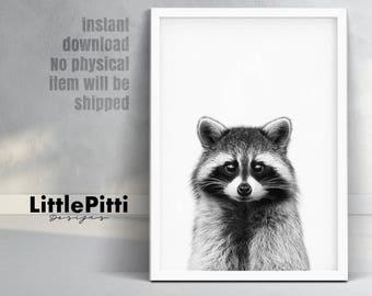 Raccoon art, raccoon print, raccoon nursery art, woodland nursery art, raccoon decor, nursery animal art, raccoon photo, cute animal art