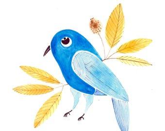 Fancy Blue Bird