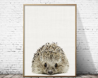 Hedgehog print, Hedgehog Nursery, Hedgehog Photo, Nursery decor, Woodland nursery, Hedgehog wall art, kids room decor, Gift