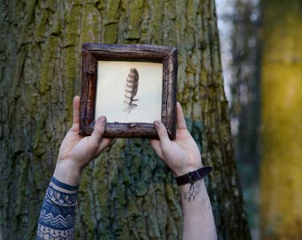 Real feather frame woodcock bird picture Beech wood frame Wooden rustic decoration Framed feather Nature art Raw wood Nature lover gift