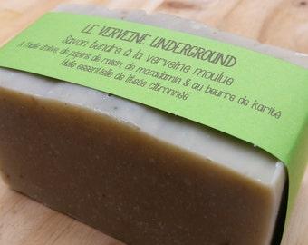 "The ""Underground vervain"", soft SOAP verbena"