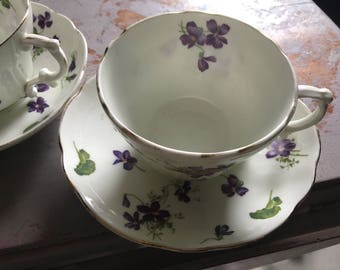 Sweet Hammersley & co violet fall tea cup saucer