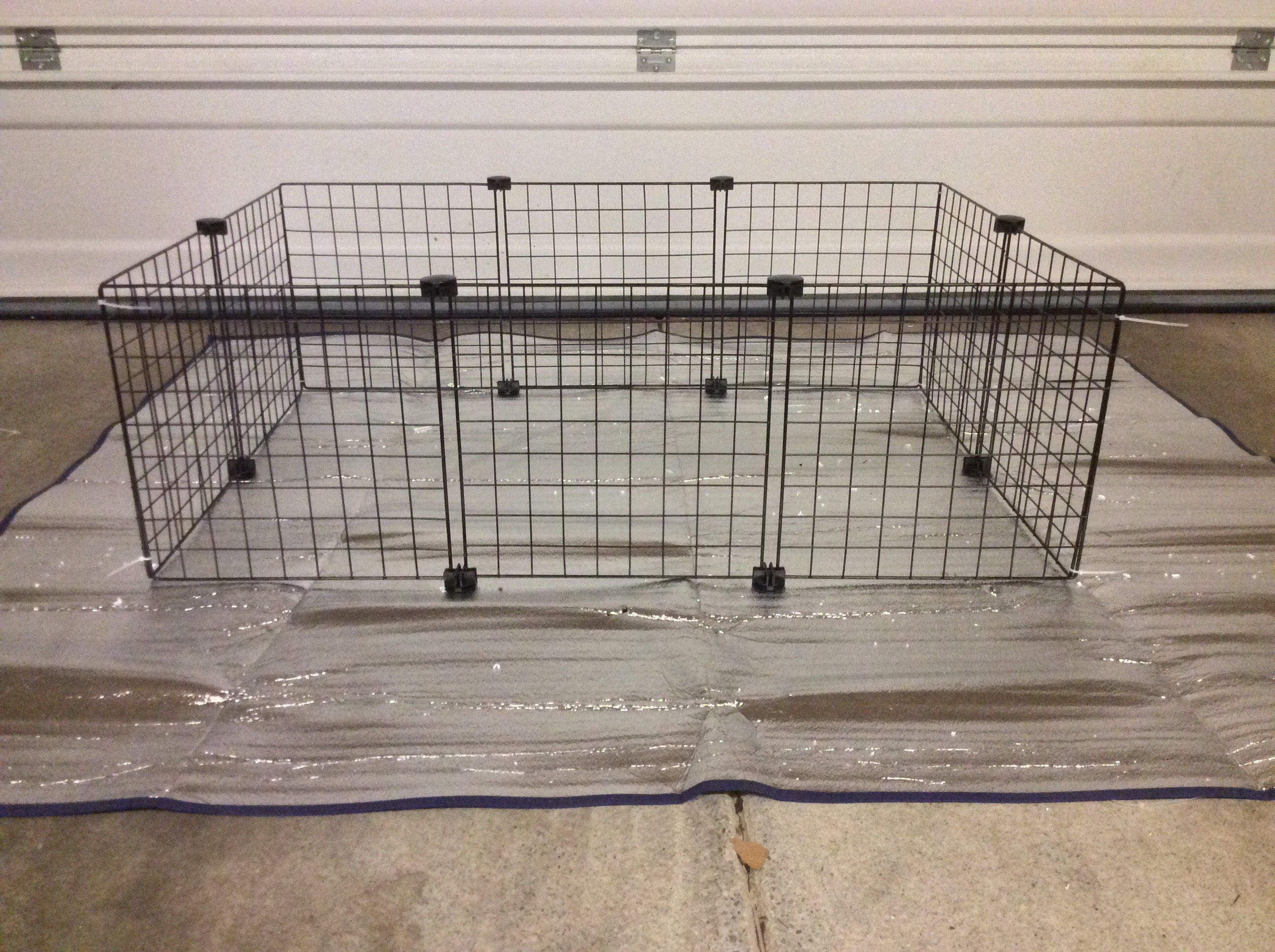 Guinea pig cage extra 14 x 14 wire grid black for Wire guinea pig cages