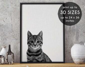 Cat print, cat art, cat, cat wall art, cat poster, wall art, cat art print, cat lover gift,wall decor,black cat,cat decor,cats,art print,102