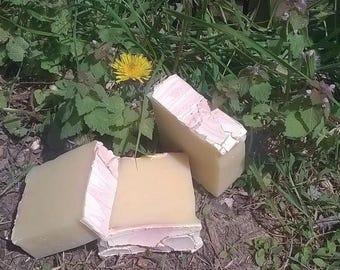 Dandelion Tangerine Soap