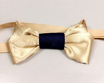 Gold and blue silk bow tie