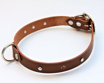 Large Genuine Leather Dog Collar (DarkBrown) 21''
