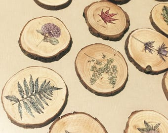 Wood Slice Botanical Magnet