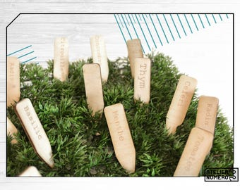 Wooden customizable plant identification tag, laser engraved, gardening, spring, garden, vegetable garden, Identifiers