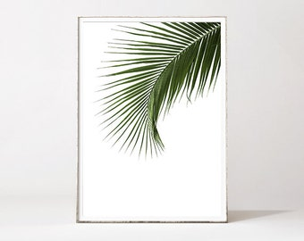 PALM LEAF PRINT, palm leaf, botanical print, leaf print, botanical art, tropical art print, palm tree, minimalist