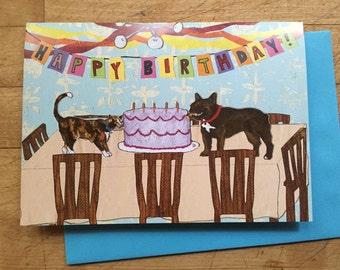 Bad Pet Birthday