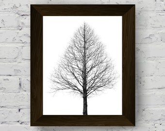 nature wall art print, black and white prints, tree photography poster, minimalist art, instant digital download, printable artwork