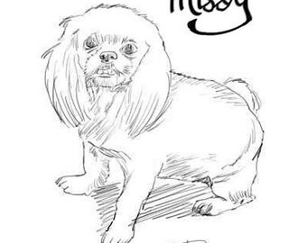 Missy - Let me make a custom drawing from your photo! 11x17'' in. print 25 dollars per person in the photo.