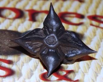 Bat Nuts , 4 Devil Pods, Trapa Natans, Protectin Magick, Hoodoo, Mojo Bags, Witchcraft, Buffalo Nut, Ling Nut, Water Caltrop