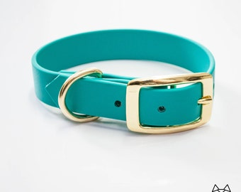 Waterproof Dog Collar in Bright Teal/Blue