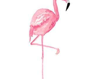 Watercolor Flamingo Clipart, Tropical, Bird, Illustration, Scrap-booking, Summer