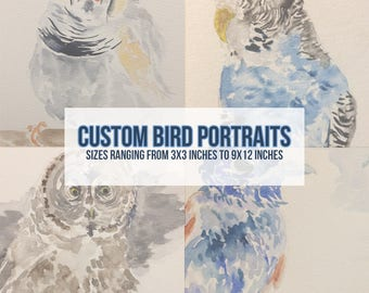 Custom Bird Portraits | Acrylic or Watercolor