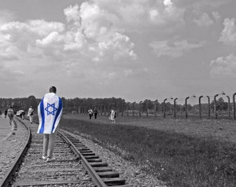 Walking Auschwitz.