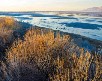 Salt Lake, Utah, Water, great salt lake
