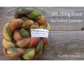 BFL hand dyed braid in' Autumn Leaves' 100 g  3.5 oz