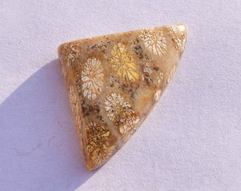 13 Cts 100 % Natural Fossil Coral Fancy Shape 26x18 mm Beautiful Loose Gemstone Beautiful Gemstone BH74