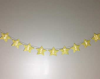 Twinkle Twinkle Newborn to 12 Months Milestone Banner - Gold Pink Glitter Twinkle Little Star Themed First Birthday