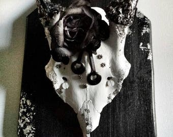 Red Deer hand painted skull, decorated with imitation edited