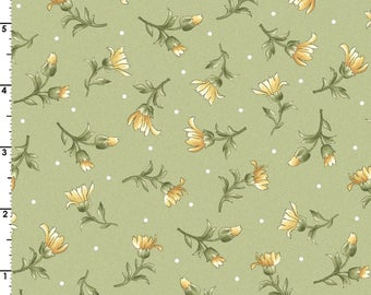 Fabric, quilting fabric, Daisy Spring Fabric, Gentle Breeze Collection, Jan Douglas, Maywood Studios