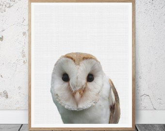 Owl Art, Owl Wall Print, Owl Wall Decor, Owl Printable Art, Bird Wall Art Print, Bird Prints, Owl Poster, Woodlands Owl Print, Owl Photo