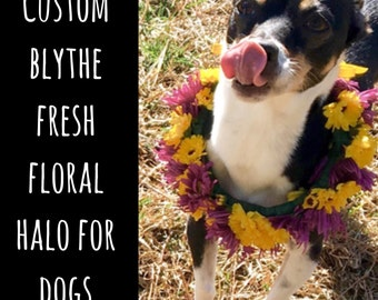 Custom BLYTHE Fresh Floral Halo DOG collar // dog floral wreath, dog flower crown, puppy flower crown, dog flower crown, dog accessories