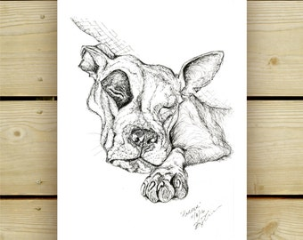 pitbull illustration , pen and ink, giclee print of original, various sizes, custom portrait info in shop listings