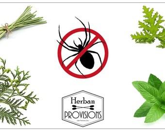 Arachnid Provisions- Organic Spider Repellent