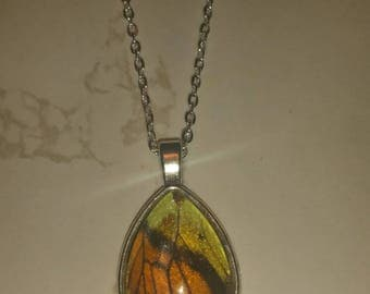 Orange and yellow wing necklace