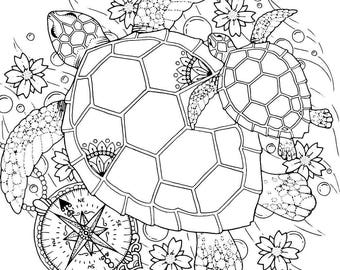 Turtle coloring page Etsy