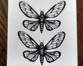 Double Butterflies - ORIGINAL