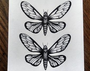 Double Butterflies - ORIGINAL