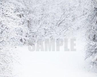 Winter Digital Background- Instant Download