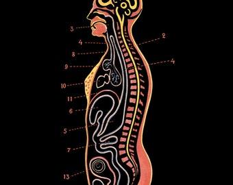 1923 Human Anatomy in Black Digital Print Download