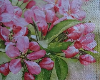 4 Spring Paper Napkins, Green and Pink Napkins, Floral Napkin, Napkin for Decoupage, Collage Napkin, Decoupage Napkin (BLOOMING CHERRY TREE)