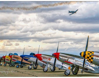 A Day at the Airshow #1