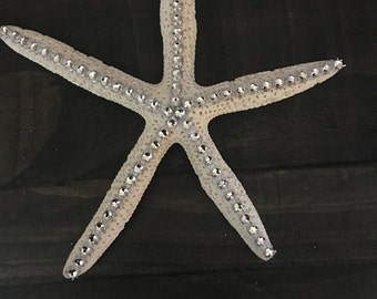Decorative Starfish- Medium
