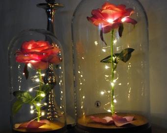 Plug in Enchanted Rose Nightlight