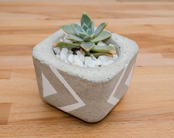 Concrete Planter, Succulent Plant Pot, Handmade, Home Decor, Cement Planter, Includes Succulent, Gift Idea, office decor