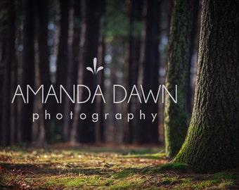 digital backdrop, Fantasy, magical, composite, photography, digital background, woods composite,