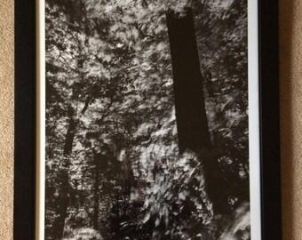 Stele : 20x30 framed archival print