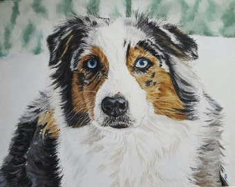 Portrait of an Australian Shepherd in the snow