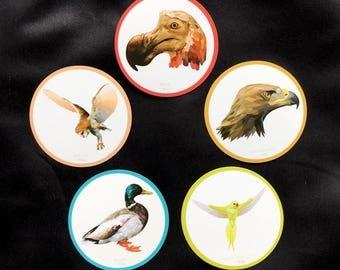 5 Fridge Magnets_set4 Bird print high quality paper