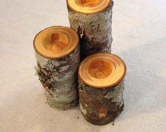 Fir Tree Branch Candle Holder